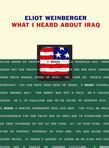 Verso-978-1-84467-036-9-what-i-heard-about-iraq-max_141