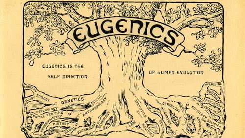 Eugenics__tree-